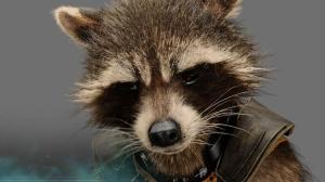 Guardians-of-the-Galaxy-Preview-Rocket-Raccoon-www.scifiempire.net_