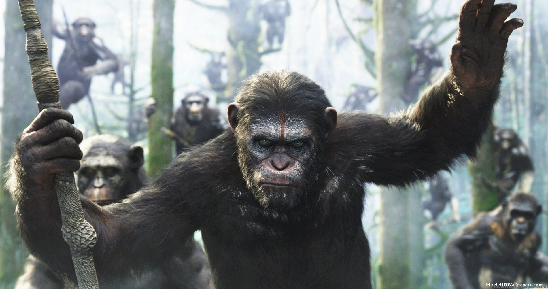 Rise of the Planet of the Apes Posters and Wallpaper
